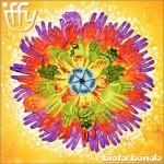 iffy: biota bondo